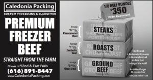 Premium Freezer Beef 350USD